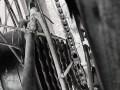 Des bâtons dans les roues - Crédit photo izart.fr