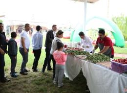 Piknik İkramları ve Kahvaltı Servisi İzmir Piknik Organizasyon