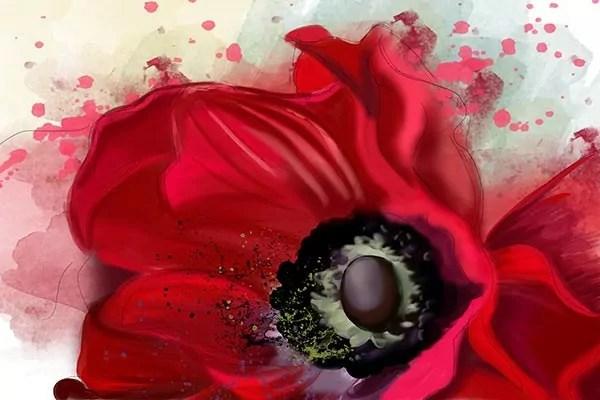 Papier Peint Fleur Rouge Izoa