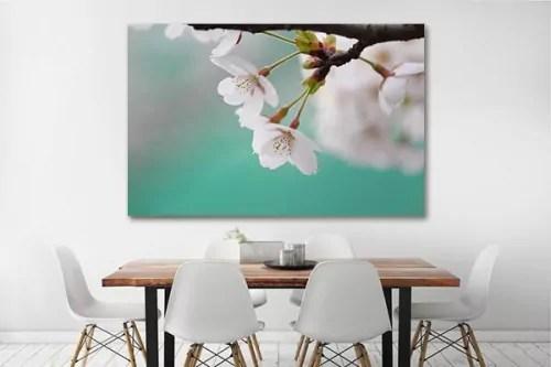 tableau sur toile petites fleurs blanches