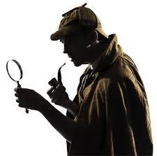 Detective Profile
