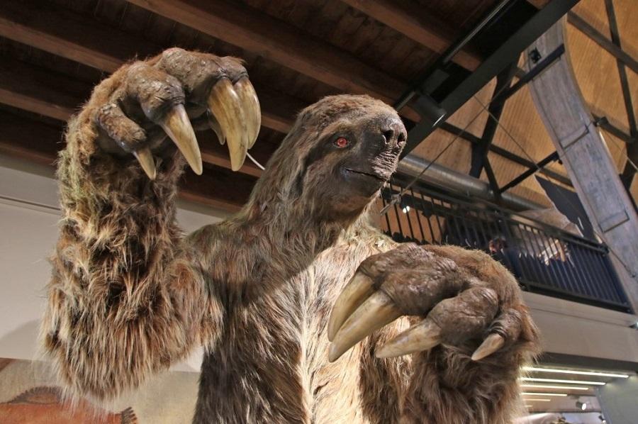 Hedendaagse beelhouwkunst reconstructie van de M. jeffersoni grondluiaards een groep van uitgestorven zoogdieren die tijdens het Plioceen en Pleistoceen leefde
