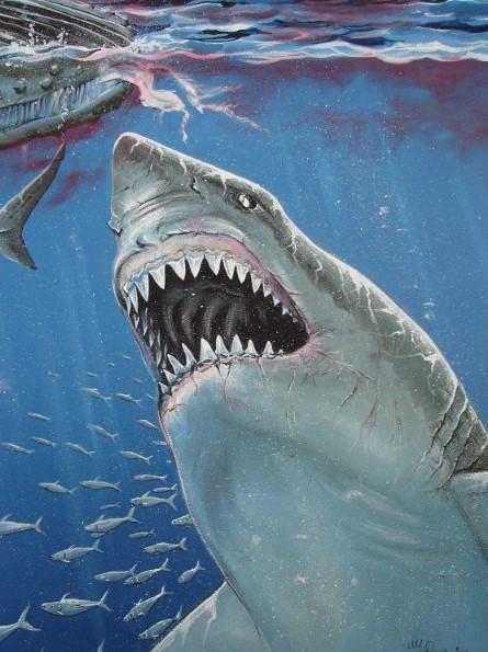 Schilderij van de prehistorische haai de megalodon
