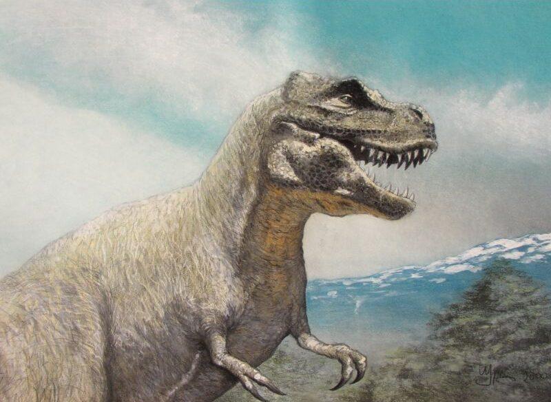 Paleo kunst tekening van de T-rex. Tekening over de uitgestorven dino's door paleo kunstenaar Jaap Roos
