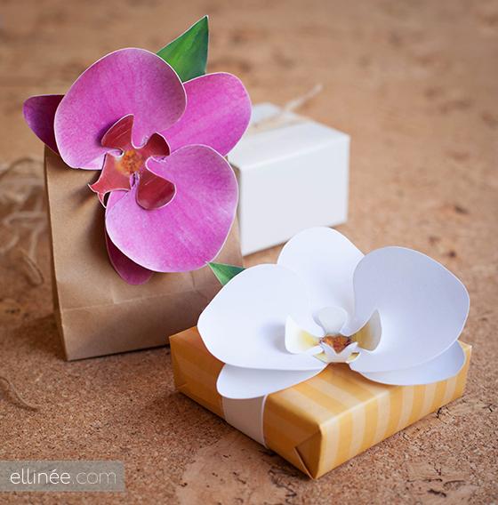 Orquídeas de papel