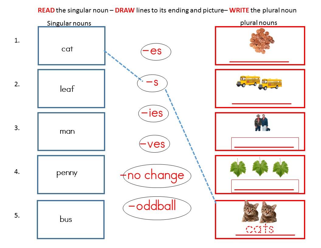 Build Plurals Review Worksheets