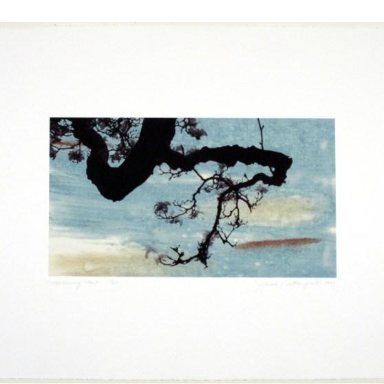 Branch Series