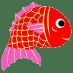鯛アイコン