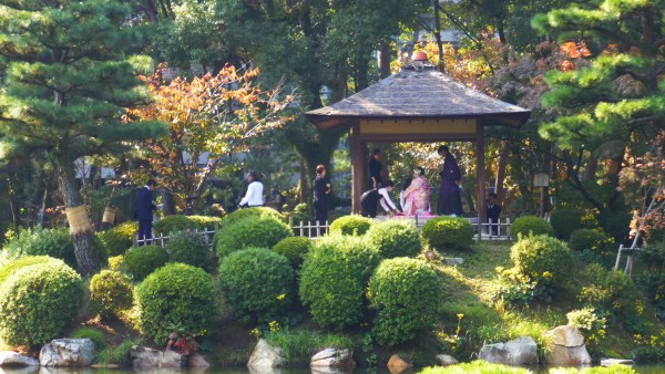 A wedding at the Shukkeien Gardens