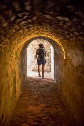 tunnels!