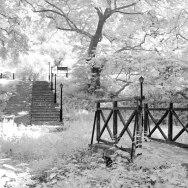 Bridge and Stairs