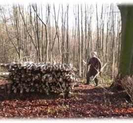 Woodland Management & Camp Maintenance | bushcraft, courses, courses, skills