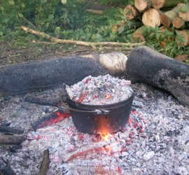 venison curry \ wild foods | foraging | bushcraft | Kent | London | south east