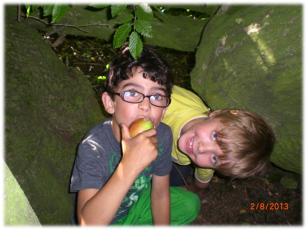 Family Bushcraft | Experience | Course