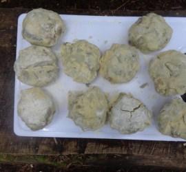 Burdock & Potato Rostis | foraging | wild foods | Kent | south east | London