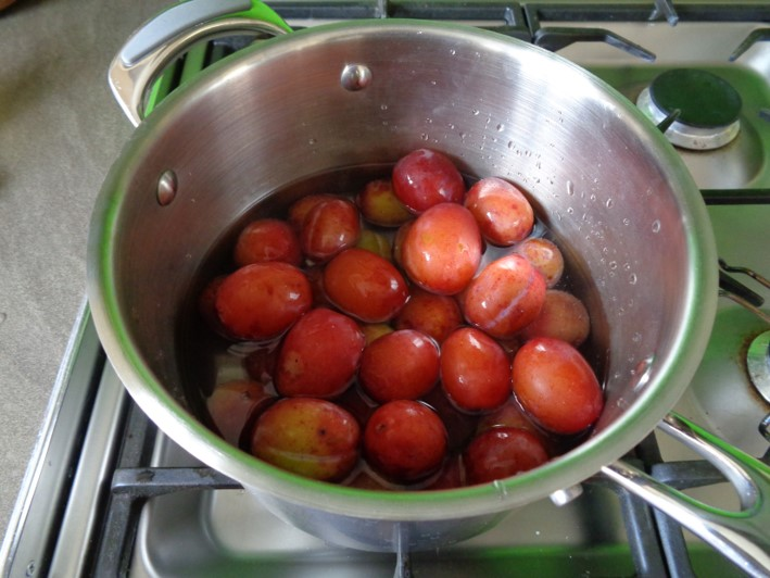 plum ketchup | foraging | Kent | south east | London