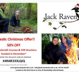 Special offer for Xmas 2014