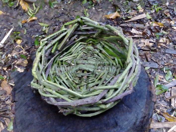 basket made from brambles