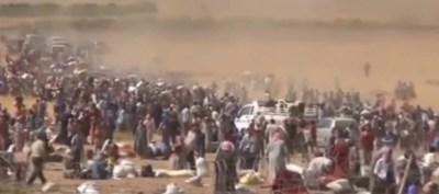 kurds.flee