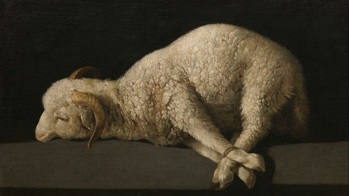 Passover without a lamb?