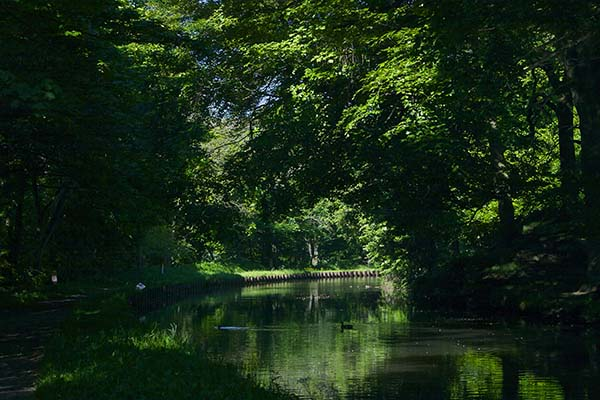 Tranquil days on the Leeds-Liverpool canal near Bradley in Airedale