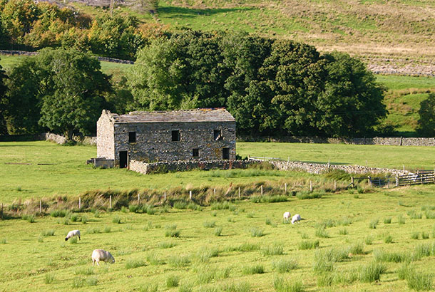Old Dales barn in Widdale