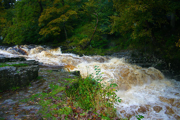 Fast flowing Ribble at Stainforth