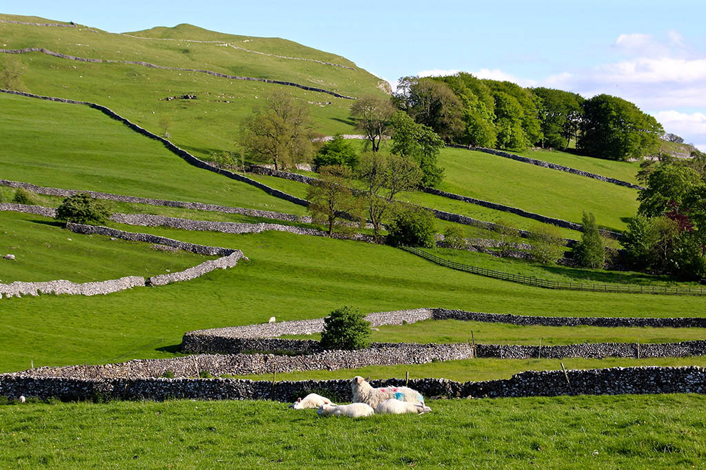 ribblesdale images
