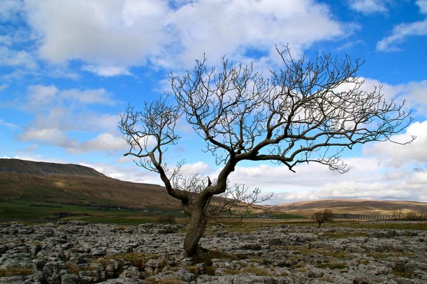 Yorkshire Whernside