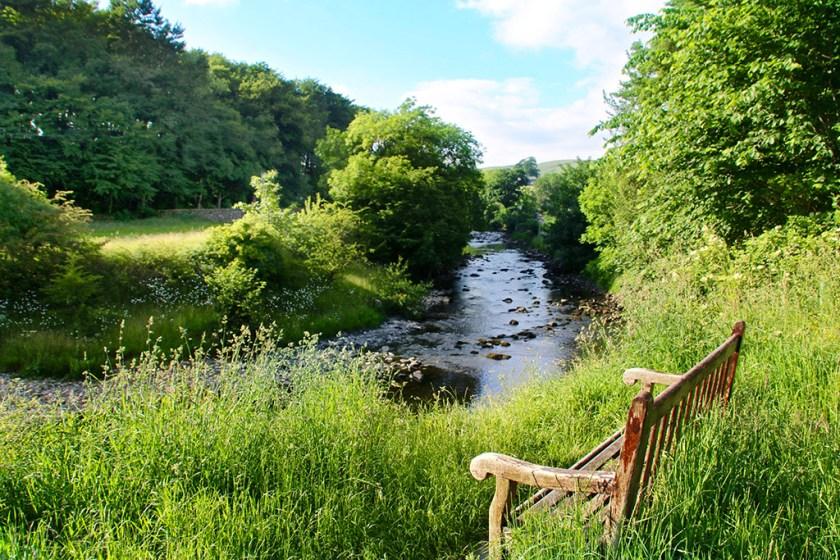 Dales bench1