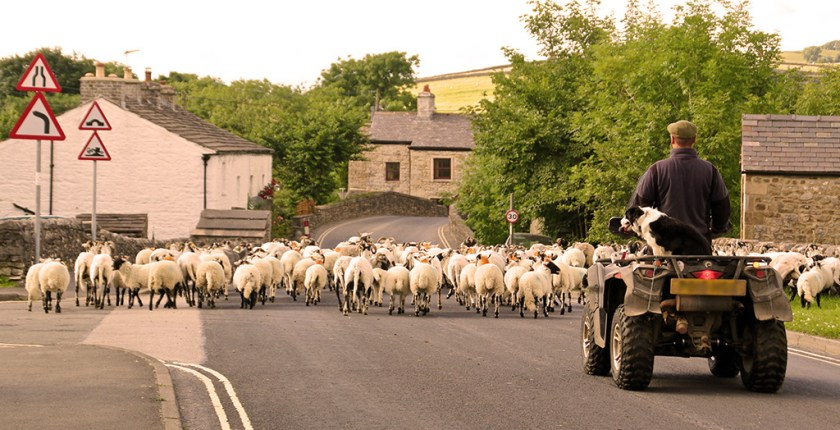 Ribblesdale wideload