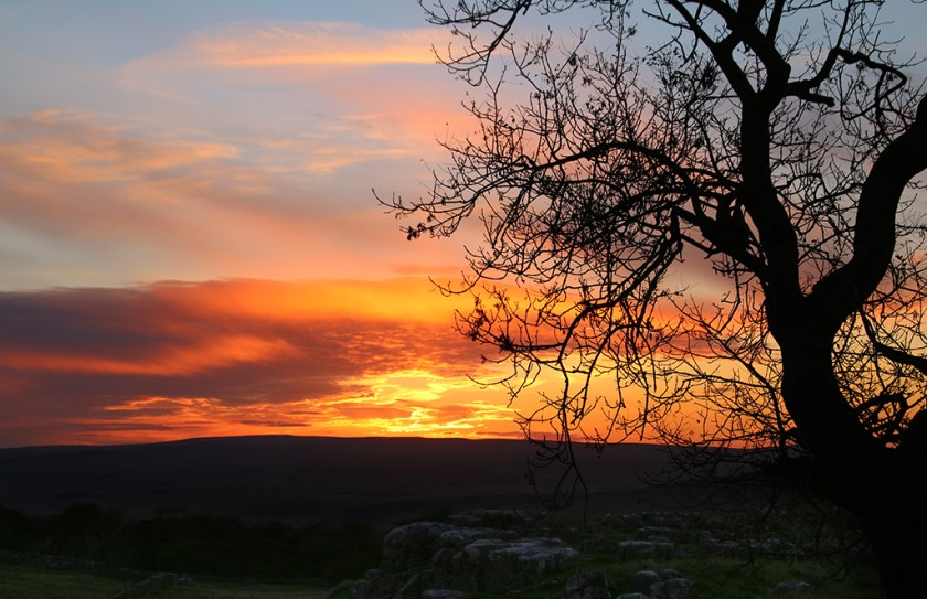 Ribblesdale suns