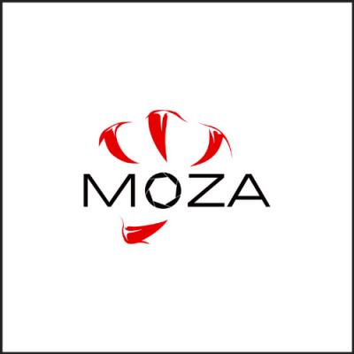MOZA 魔爪穩定器