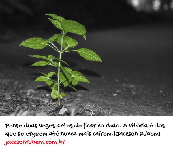 Frases de Vitoria 3