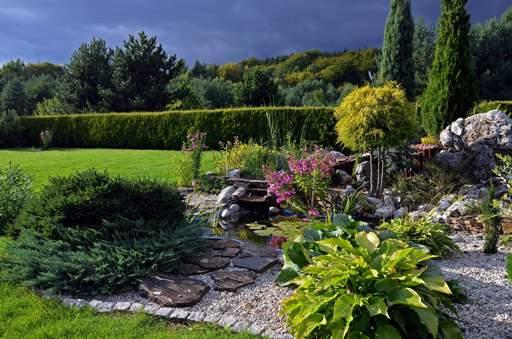 How To Create A Rock Garden With Alpine Plants Garden Design Planning