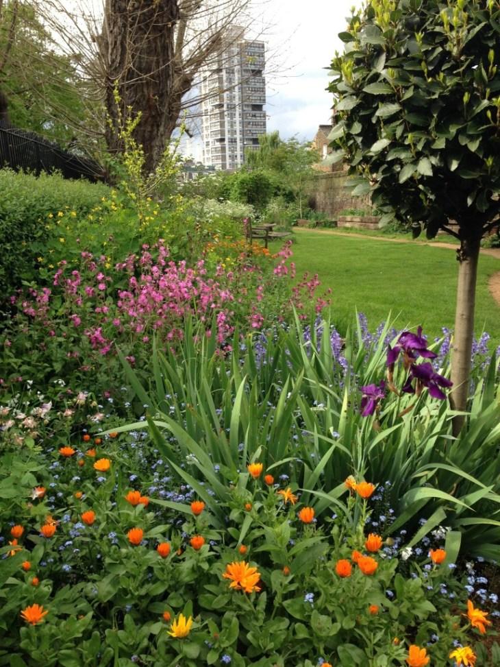 Eden Community Garden Clapham Old Town