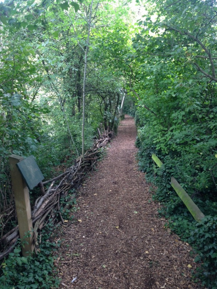 Lovely woodland pathways take you out of the city, despite being in the heart of it