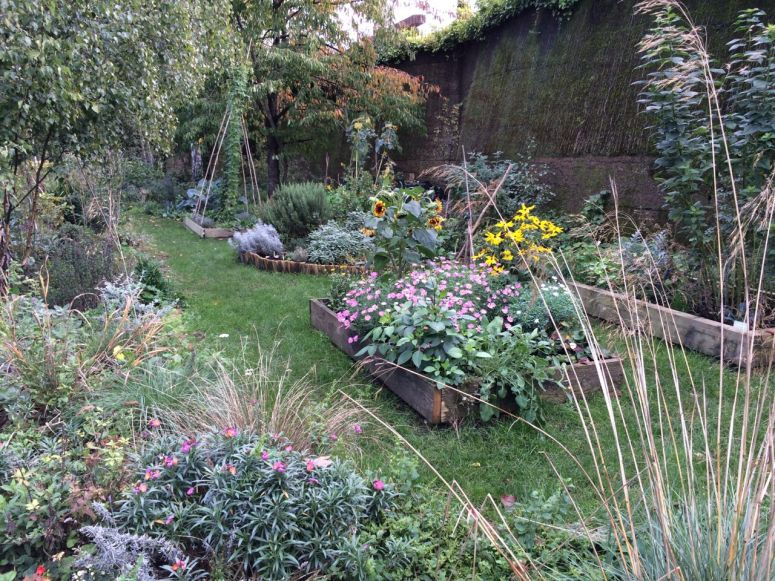 Wandsworth Town community garden still looks amazing