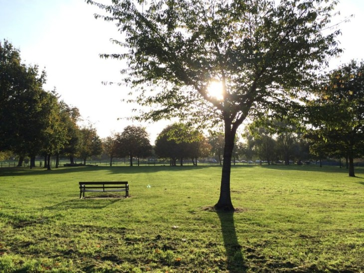 Clapham Common - sunny but cold morning, leaves dropping off all trees now