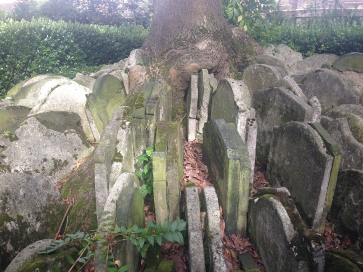 A trees roots growing over a mass pile of gravestones in St Pancras Gardens cemetry