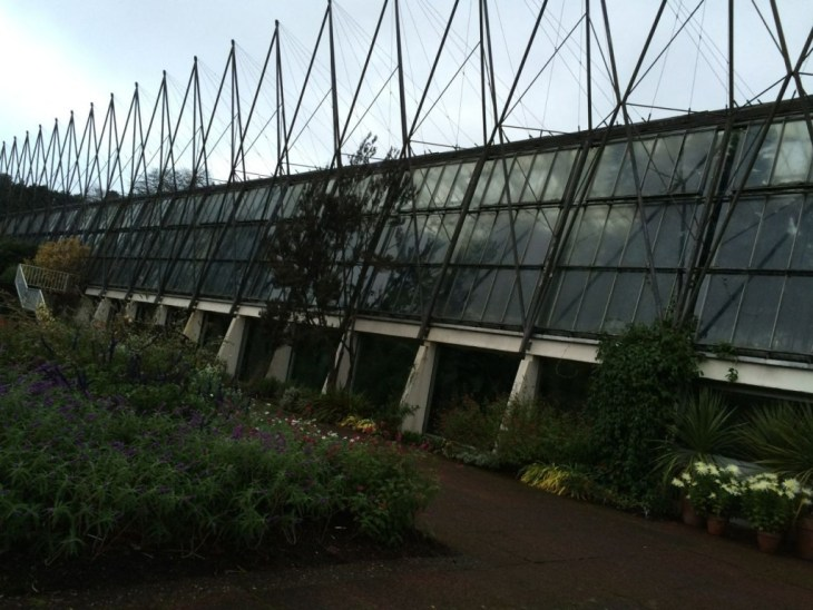 The glasshouse network is vast and maze-like