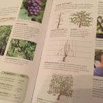 Book Review: RHS Complete Gardener's Manual