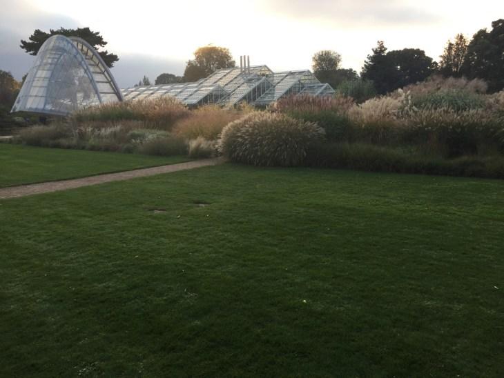 kew-gardens-autumn - 5