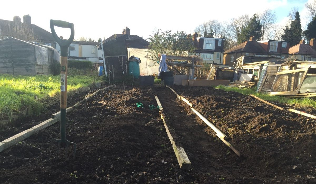 My Allotment: month 1 - preparation and planning