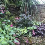 Form factor – our garden in June 2016
