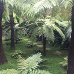 NGS Camberwell