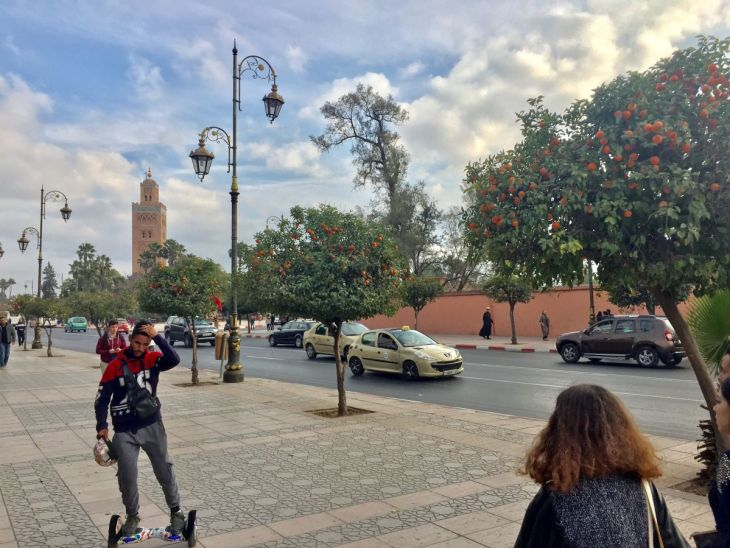 Orange trees line the streets of Marrakesh, here leading to the Koutoubia Mosque