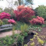 RHS Wisley in late April