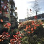 From the streets: A walk in the winter sunshine