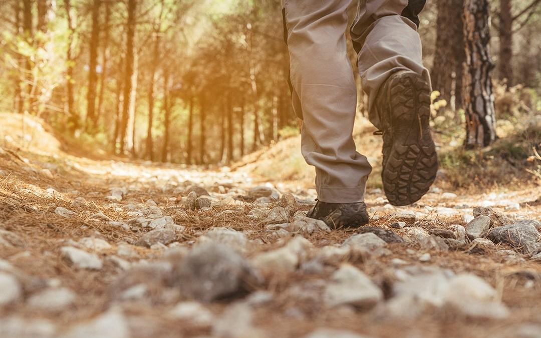 The Walk of Faith